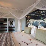 Isilimela Lodge accommodation